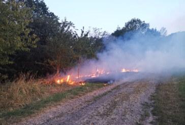 Auch am Samstag wieder mehrere Einsätze für Rintelner Feuerwehren