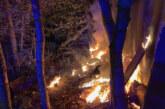 Uchtdorf: Feuerwehreinsatz in Waldstück