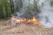 Ortsfeuerwehr Uchtdorf zu Feuer am Taubenberg alarmiert