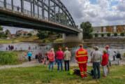 Alles im Fluss: Weserschwimmen lockt 110 Teilnehmer ins Wasser