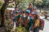 Wellenreiter Kindergruppe des Kinderschutzbundes verbringt aktive Freizeit in den Ferien