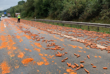 Stau auf der A2: Eine Tonne Möhren auf Autobahn gelandet