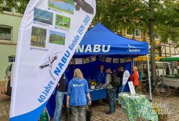 """NABU Rinteln feiert 40-jähriges Bestehen und lädt zum """"Markt der Aktiven"""""""