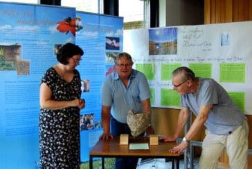 """""""Bienenschar"""" in der Johanniskirchengemeinde: Hautflügler-Ausstellung des NABU noch bis Mitte September zu sehen"""
