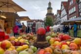 Alles rund um den Apfel – und vieles mehr beim Rintelner Apfelmarkt