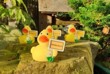 Für den guten Zweck: Möllenbeck-Ente ab sofort im Klosterdorf erhältlich