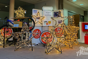 """""""50 Sterne für den Klimaschutz"""": Weihnachtssterne von Schülern aus der BBS-Manufaktur gebaut"""