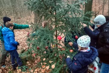 Kinder und Eltern schmücken Tannenbaum für Waldtiere unterm Klippenturm
