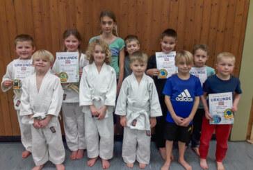 Erfolgreiche Judo Safari 2019 in der Judo-Abteilung der VT-Rinteln