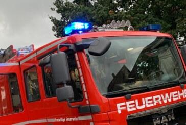Rinteln: Feuerwerkskörper setzt Hecke in Brand