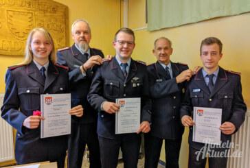 Feuerwehr Goldbeck startet mit Jahreshauptversammlung in 2020