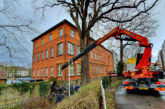 Fußgängerbrücke hinter dem Rathaus wird wieder aufgebaut