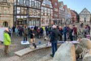 """Freiwillig Tempo 120, kostenlose Schülerbeförderung und vieles mehr: """"Omas und Opas for Future"""" bei Kundgebung auf dem Marktplatz"""