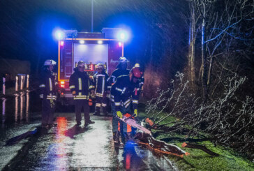 Orkantief Sabine beschäftigt Feuerwehr in Porta Westfalica