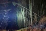 Bäume umgestürzt: Wennenkämper Straße voll gesperrt