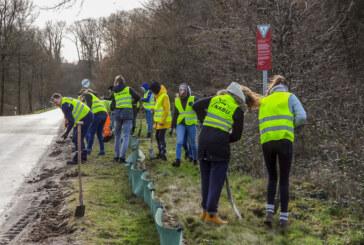 NABU Rinteln stellt Amphibienschutzzäune auf: Unterstützung vom Ratsgymnasium Stadthagen
