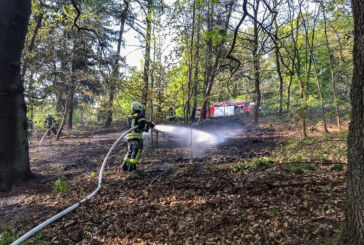Feuerwehreinsatz im Möllenbecker Wald
