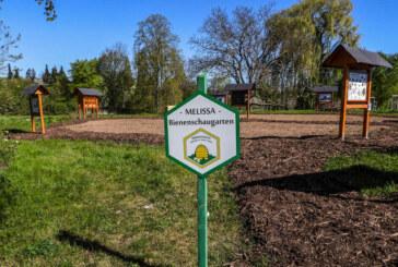 """Insektenschaugarten """"Melissa"""": Begehbare Bienenwabe nimmt Form an"""