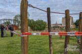 (Update: Bienenschwarm im Strauch von Imker eingefangen) Bienen-Einsatz am Weseranger: Polizei sperrt Spielgerät und Teilbereich der Wiese