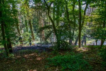 Feuerwehr löscht Brand in Wald am Jakobsberg