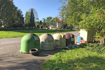 Bewässerung, Pflasterung, Wildwuchs, Müllprobleme: Anfragen im Ortsrat an die Verwaltung