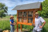 Bienenschaukasten zum Welttag der Bienen fertiggestellt