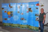 Exten: Ausstellung über Hautflügler wieder zu sehen