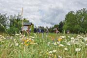 """""""Melissa"""" feiert Premiere: Insektenschaugarten und Blumenwiese im Rintelner Süden feierlich eingeweiht"""