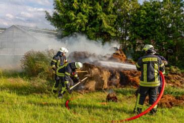 Feuerwehreinsatz an Gärtnerei in Veltheim
