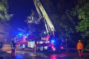 Starkregen und Windhose sorgen für Feuerwehreinsätze in Todenmann