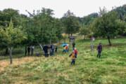 Apfelfest ein voller Erfolg: 200 Gäste in Hohenrode