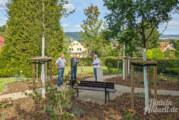 Hohenrode: Ab sofort Baumbestattungen möglich