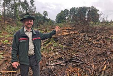 """Projekt """"Bürgerwald Extertal"""" ist gestartet"""