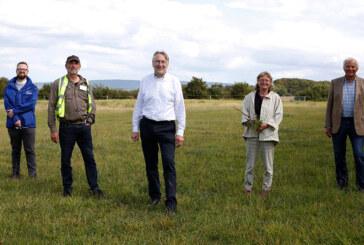 """NABU appelliert an EU: """"Agrarpolitik muss Platz für die Natur sichern"""""""