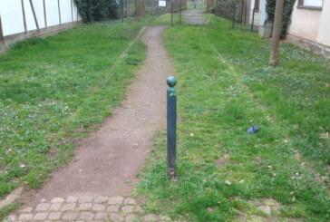 Heute im Ortsrat: Pflasterung und Verschönerung / 400-jähriges Universitätsjubiläum