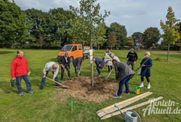 Zum Abschluss der Interkulturellen Woche: Kanadischer Ahornbaum auf Freibadgelände gepflanzt