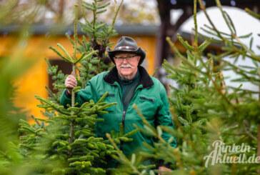 Brand´s Weihnachtsbäume: Tannen aus Volksen für Rinteln und die Umgebung