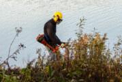 Hohenrode: Freie Sicht für Vögel und Besucher