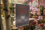 """Ein Licht, das Zeichen setzen soll: Friseure und Einzelhandel """"brennen für ihre Kunden"""""""