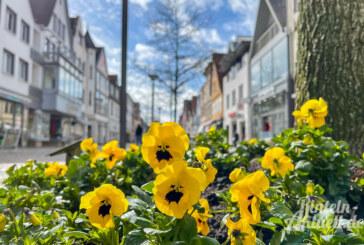 """""""Lust auf Frühling"""": Frühlingsüberraschungen am 20. März im Rintelner Einzelhandel"""