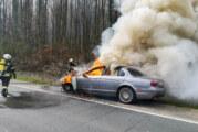 Steinbergen: Feuerwehr löscht brennenden Jaguar auf B83