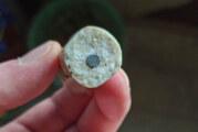 Rinteln: Wurst mit Nägeln gespickt und ausgelegt