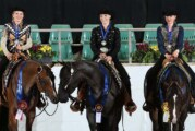 Meisterschaften der Westernpferde: Nina Drangmeister holt mehrere Auszeichnungen nach Krankenhagen